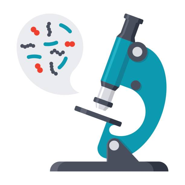Scientific Research Vector Icon Scientific research concept with microbes in microscope, vector illustration in flat style microscopic image stock illustrations