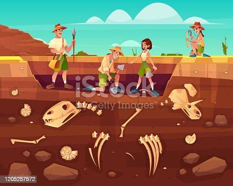 istock Scientists exploring fossils on excavations vector 1205257572