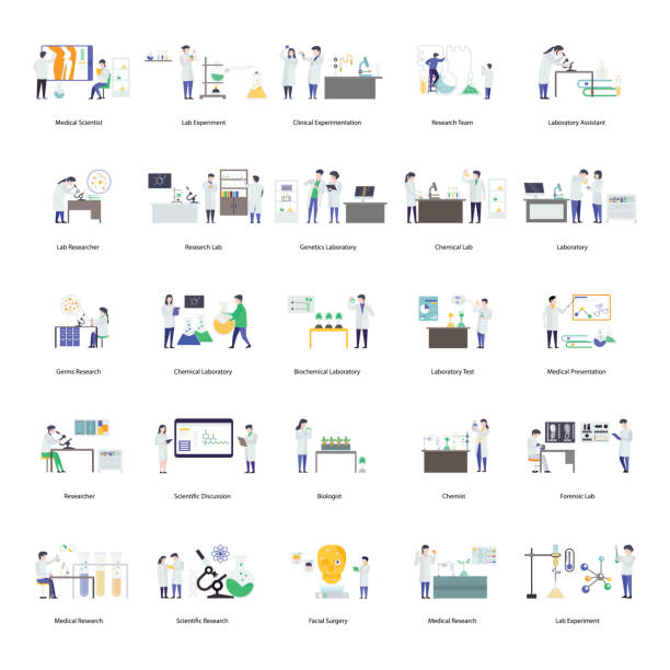 Scientists Research Flat Illustration Scientists research flat illustration presenting captivating visuals vectors leads the features of scientific experiment best for your science projects. Grab it now! medico stock illustrations