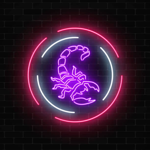 Scorpio glowing neon sign in circle frames on dark brick wall background. Scorpio glowing neon sign in circle frames on dark brick wall background. Nightlife advertising symbol of nightclub or tattoo parlor. Vector illustration. scorpio stock illustrations
