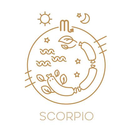 Schorpioen Vector Tekens Van De Dierenriem In Cirkels Astrologische Voorspelling Horoscoop Voor Een Enkel Teken Logo Tatoeage Of Illustratie Stockvectorkunst en meer beelden van Aaien