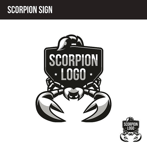 ilustraciones, imágenes clip art, dibujos animados e iconos de stock de scorpion logo with place for your text - calendario de vida salvaje