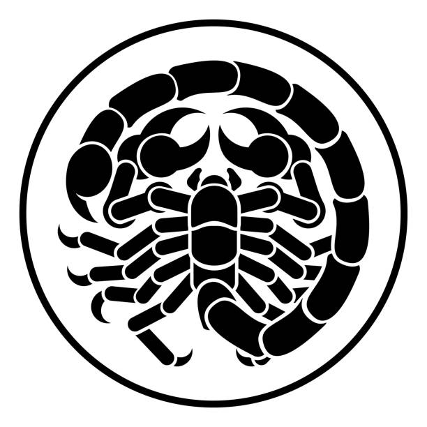 Signe de Scorpion Scorpion du zodiaque Horoscope Astrologie - Illustration vectorielle