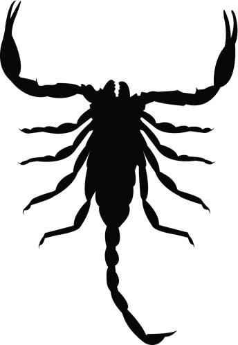 Scorpion Silhouettes