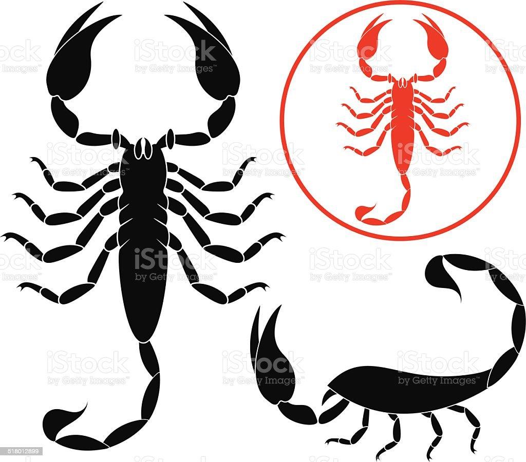 Scorpion vector art illustration