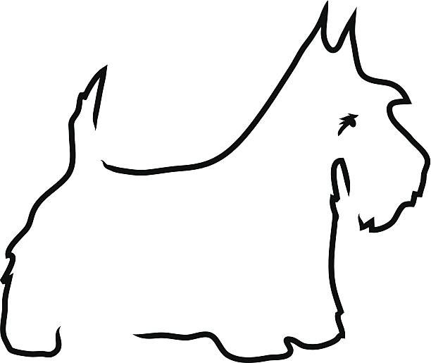Drawing Vector Lines In Photo Cs : Scottish terrier clip art vector images illustrations