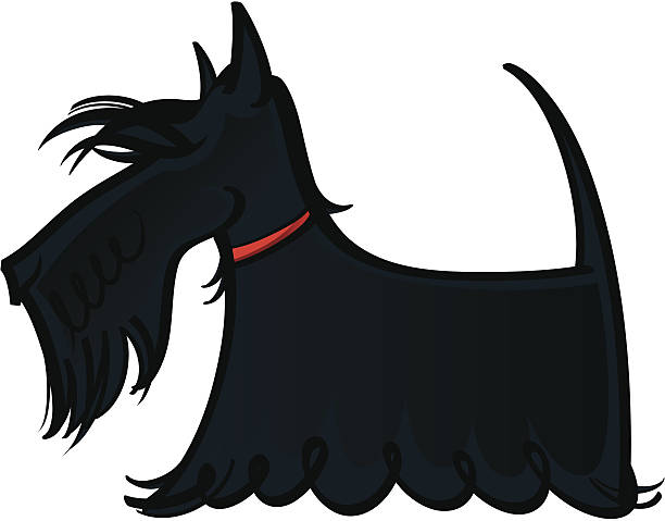 Royalty Free Scottish Terrier Clip Art, Vector Images ...