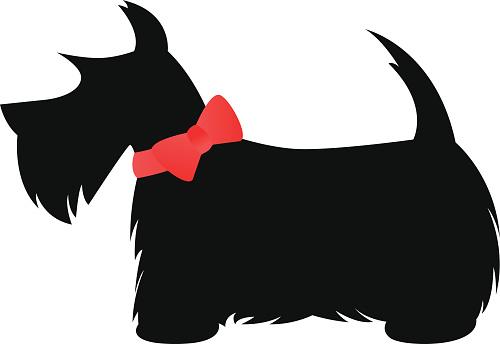 Scottie (Scottish Terrier)