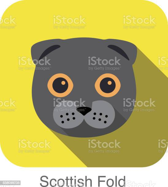 Scottish fold cat breed face cartoon flat icon design vector id538099235?b=1&k=6&m=538099235&s=612x612&h=gego9na etn8k0rywwt20d624ehxi8 fvkxuhqwfnhw=