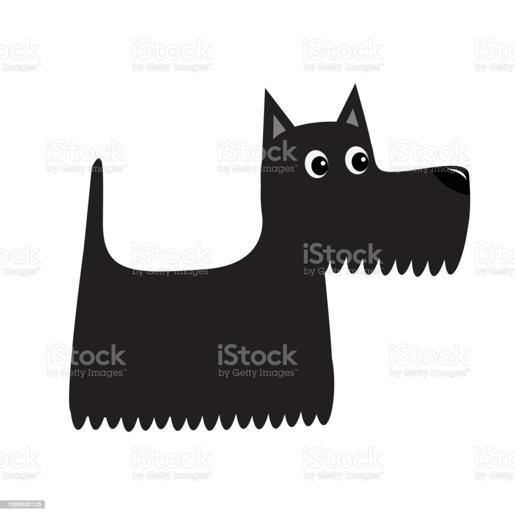 Scottish Terrier Black Dog Scottie Puppy Cute Cartoon Character Pet Animal Collection Adopt Concept Flat Design White Background Isolated Stock Illustration Download Image Now Istock