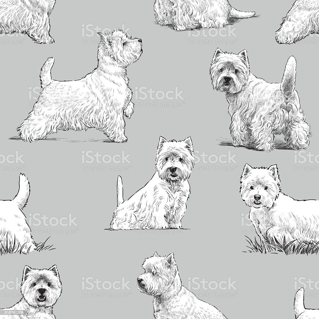 scottish terrier pattern vector art illustration