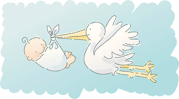 illustrations, cliparts, dessins animés et icônes de scribbles: cigogne - naissance