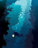 Scuba diver and coral reef. Underwater sea.