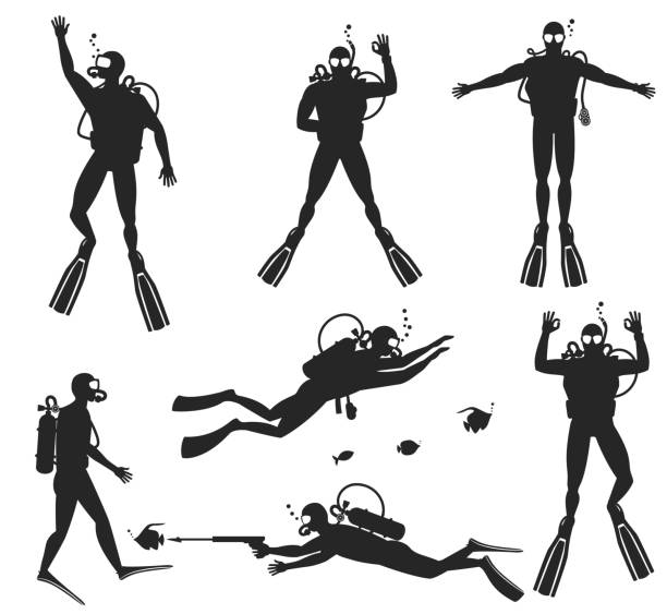 Scuba diver silhouettes. Diving silhouettes on white background Scuba diver silhouettes. Diving silhouettes on white background.  Speargun and water sport, people diving sea. Vector illustration diving into water stock illustrations