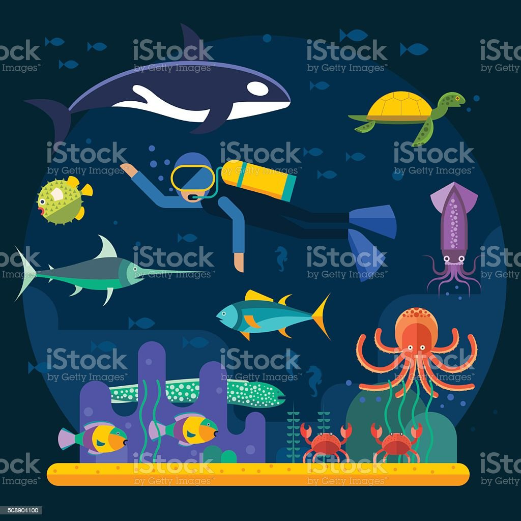 Scuba diving with fishes and coral reef vector illustration vector art illustration