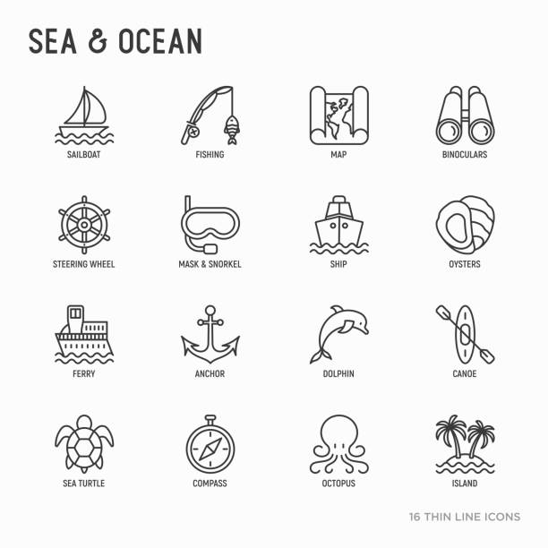 Sea and ocean journey thin line icons set: sailboat, fishing, ship, oysters, anchor, octopus, compass, steering wheel, snorkel, dolphin, sea turtle. Modern vector illustration. Sea and ocean journey thin line icons set: sailboat, fishing, ship, oysters, anchor, octopus, compass, steering wheel, snorkel, dolphin, sea turtle. Modern vector illustration. sailboat stock illustrations