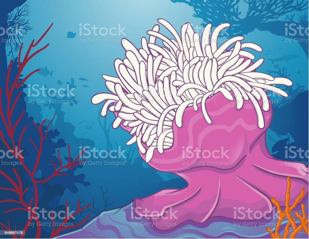 Ilustración de Anémona De Mar Anémone De Mer y más banco de imágenes ...