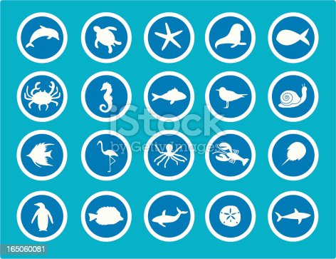 20 vector icons of Sea Animals. Download includes also includes Adobe Illustrator CS file.