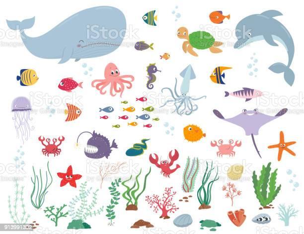Sea animals and water plants cartoon vector illustration vector id913991302?b=1&k=6&m=913991302&s=612x612&h=nozwztkpbzu9gwkklegh9jod7vb44nn980m6i9fzftc=