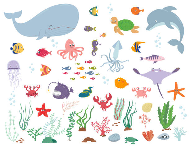 Sea animals and water plants. Cartoon vector illustration Sea animals and water plants. Cartoon vector illustration on a white background underwater stock illustrations
