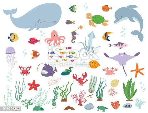 Sea Animals And Water Plants Cartoon Vector Illustration ...