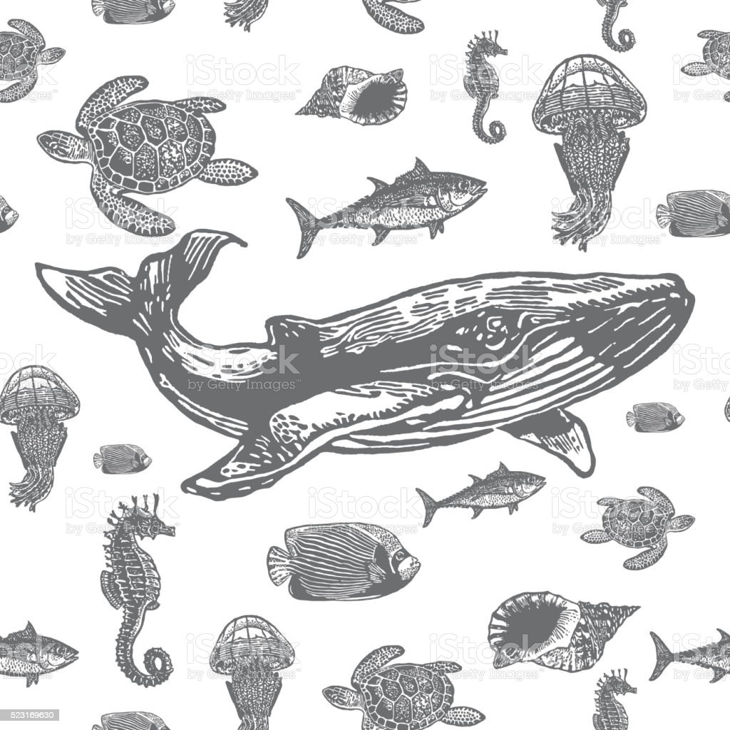 Sea animals black and white seamless vector pattern. vector art illustration