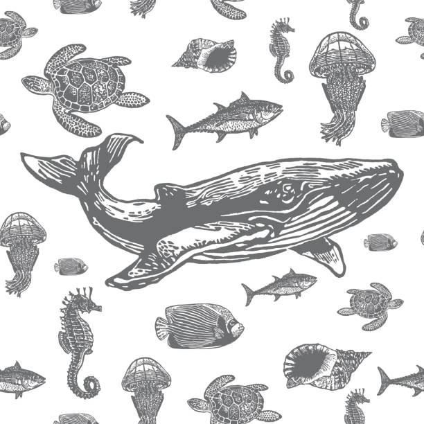 Sea animals black and white seamless vector pattern. Sea animals black and white seamless vector pattern. Realistic engraved style of Sea animals on white background. linocut stock illustrations