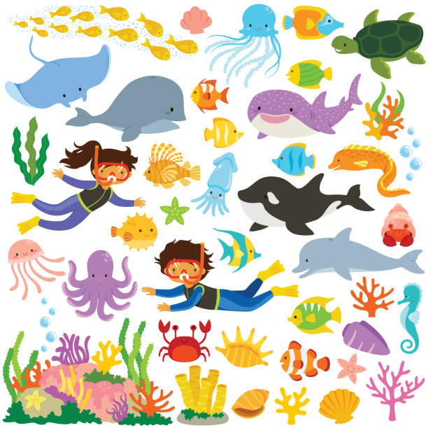 Sea animals collection Sea animals clip art set. Big collection of cartoon cute sea creatures and divers. marine life stock illustrations