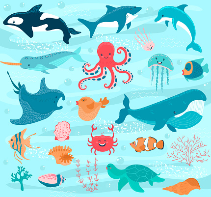 Sea animals vector cartoon ocean characters crab, funny octopus and whale underwater illustration marine set. Cute fishes stingray, happy jellyfish and dolphin seabed with shells corals
