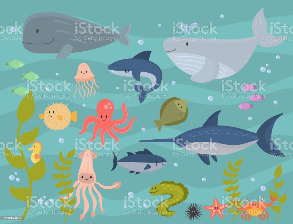Sea Animals Vector Creatures Characters Cartoon Ocean Wildlife Marine Underwater Aquarium Life Water Graphic Aquatic Tropical Beasts Illustration