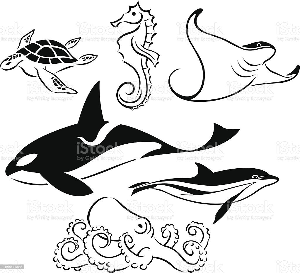 sea animals whale dolphin turtle octopus seahorse stock vector art
