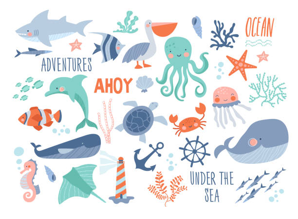 Sea background - cute sea and ocean animals Sea background - cute sea and ocean animals whale, narwhal, ship, lighthouse, anchor, marine plants, wreaths and quotes. marine life stock illustrations