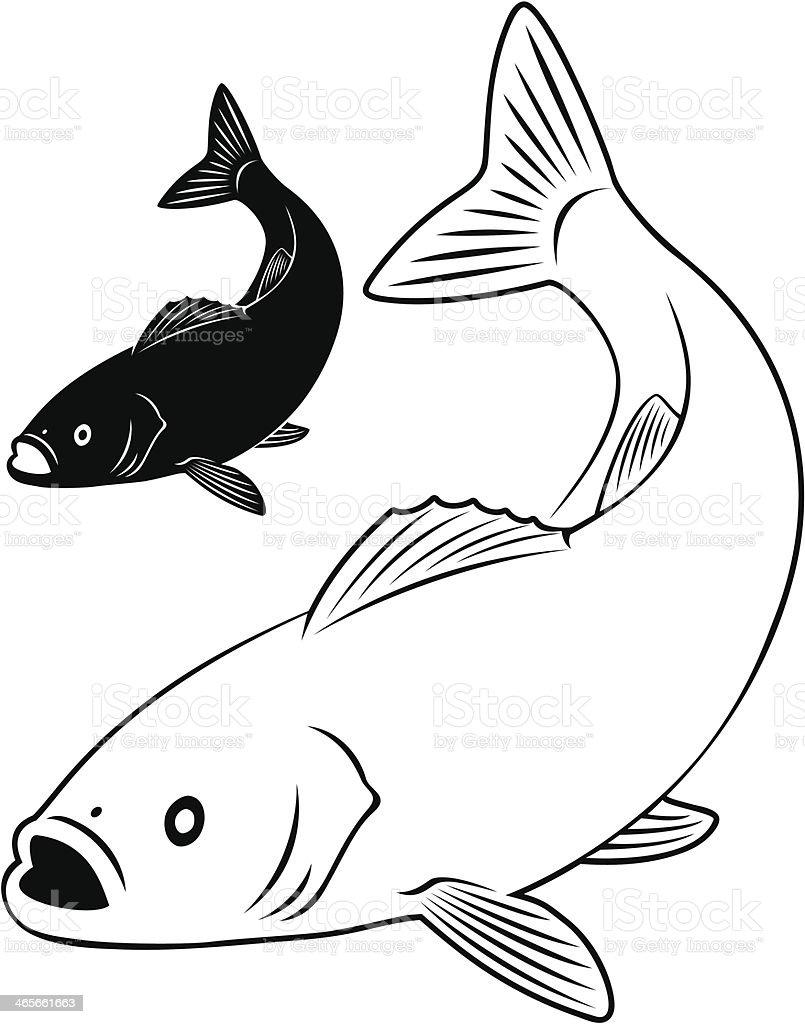 sea bass royalty-free stock vector art
