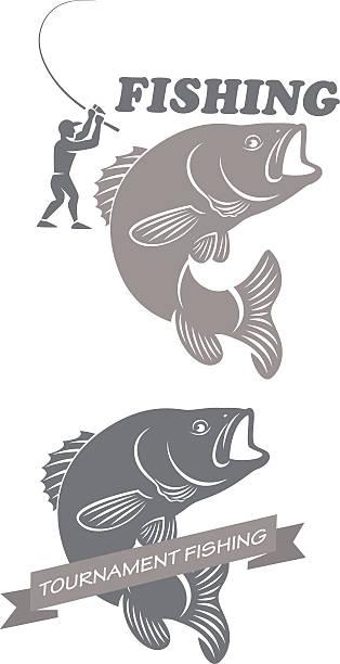 sea bass - redfish stock illustrations, clip art, cartoons, & icons