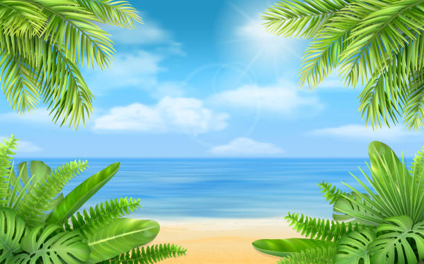 sea beach and tropical bushes Sea beach and tropical bushes. Vector background with exotic plants for design vacation or travel advertising card. idyllic stock illustrations