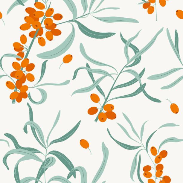 바다 갈매 나무속 가지. 매끄러운 패턴. 꽃 간단한 미니멀 그래픽 디자인. 벡터. - 씨벅턴 stock illustrations