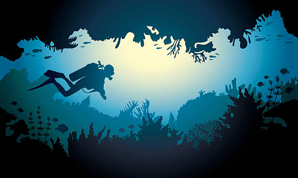 stockillustraties, clipart, cartoons en iconen met sea cave with diver and coral reef. - depth vector