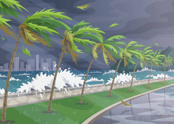 Sea Coast Landscape during  Storm in Ocean Seaside landscape during storm in ocean, huge waves and palm trees on high wind along coast. Natural disaster hurricane incoming on sea vector flat illustration. storm stock illustrations