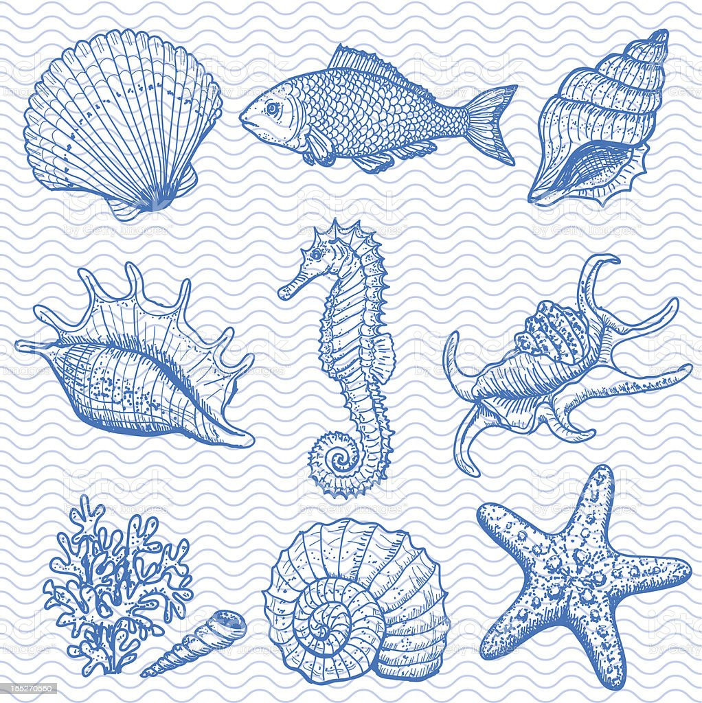 Sea collection. Original hand drawn illustration vector art illustration