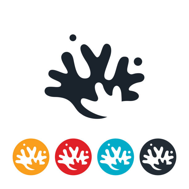 meer korallen symbol - algen stock-grafiken, -clipart, -cartoons und -symbole