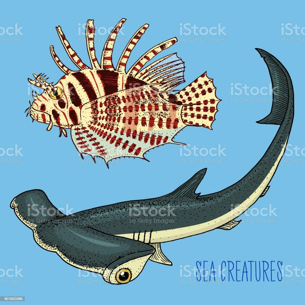 Ilustración de Pez León Rojo De La Criatura De Mar Y Tiburón ...