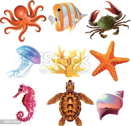 A set of 9 finishing illustration Marine life/sea creatures for your web page, interactive, presentation, print, and all sorts of design need.