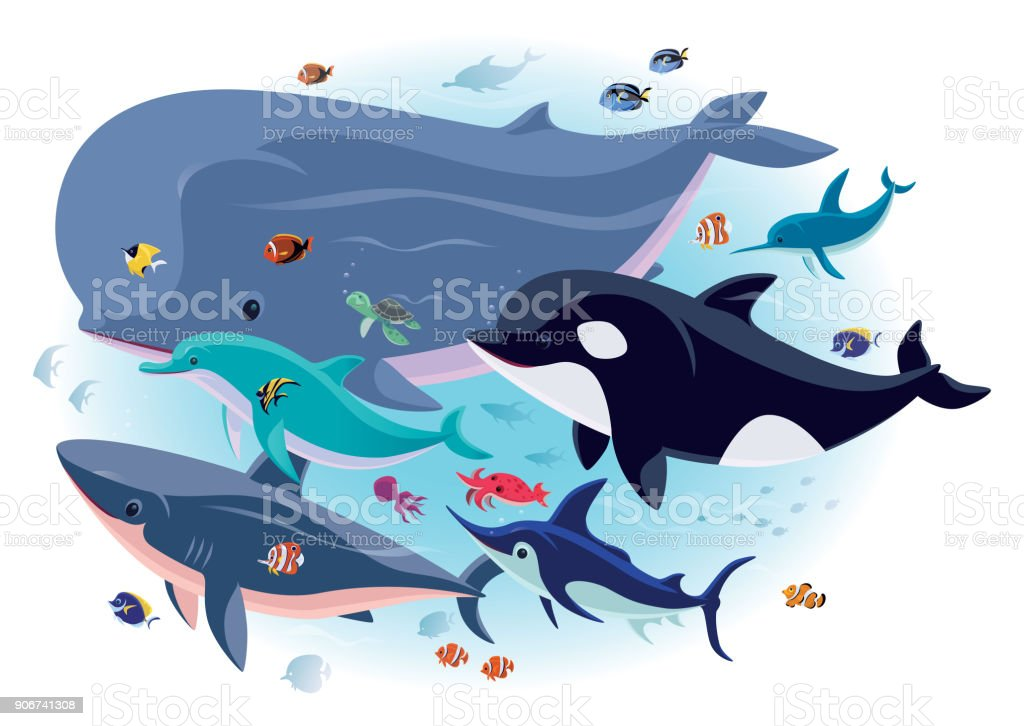 sea creatures with tropical fishes vector art illustration