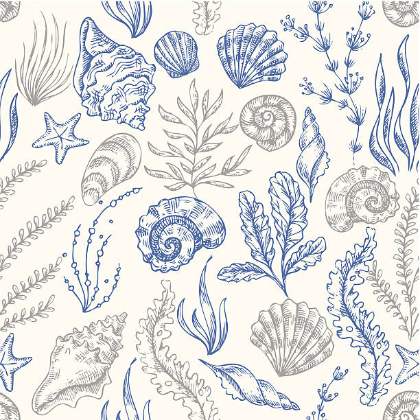 stockillustraties, clipart, cartoons en iconen met sea elements pattern - zeeschelp