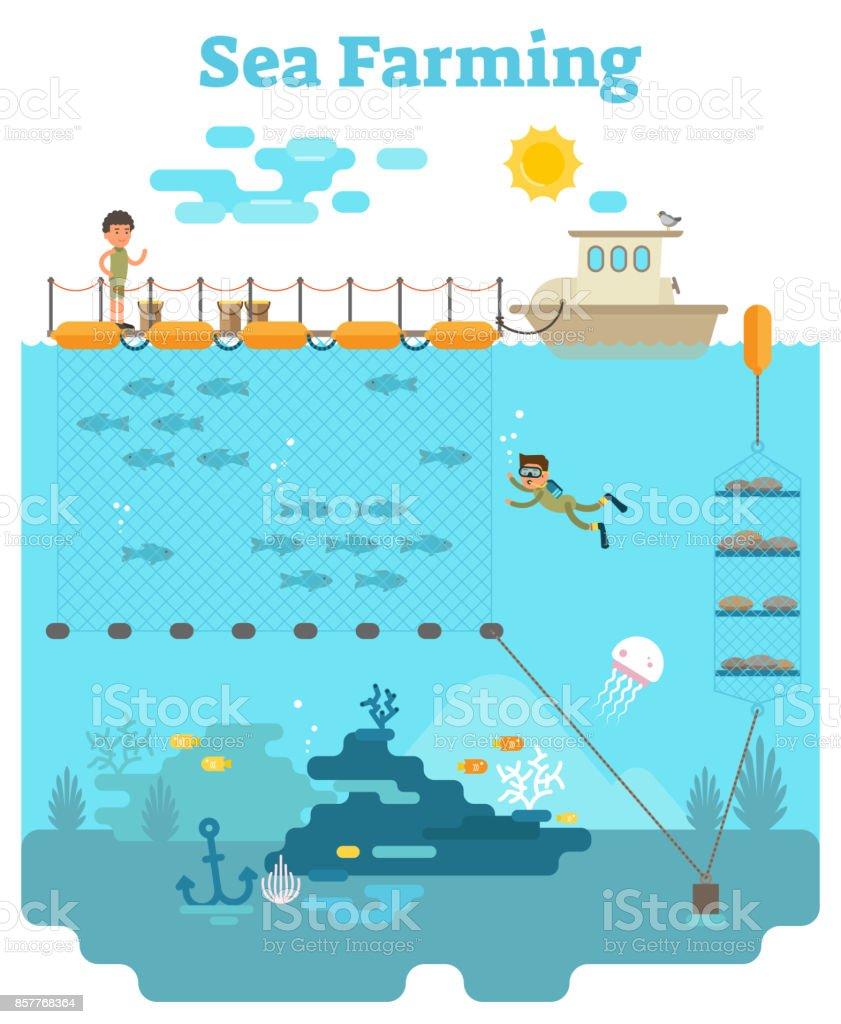 Sea Farming illustration vector art illustration