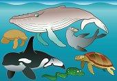 Big underwater life. Aquarium for study and fun.