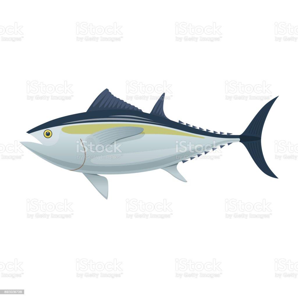 Sea fish. Colorful fish of sea tuna. Fish, eating, menu vector art illustration
