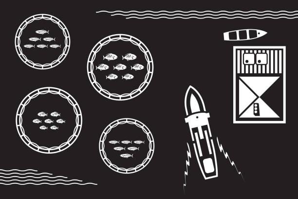 ilustrações de stock, clip art, desenhos animados e ícones de sea fish farm from above - vector illustration - aquacultura