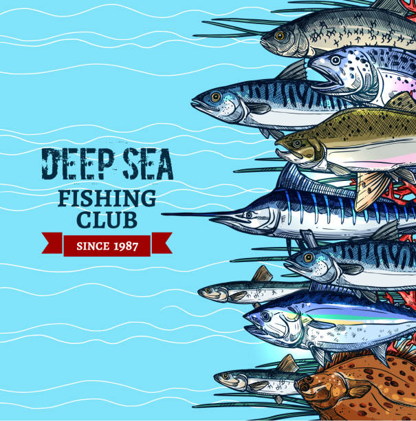 Sea fishing club poster design with fish sketches vector art illustration