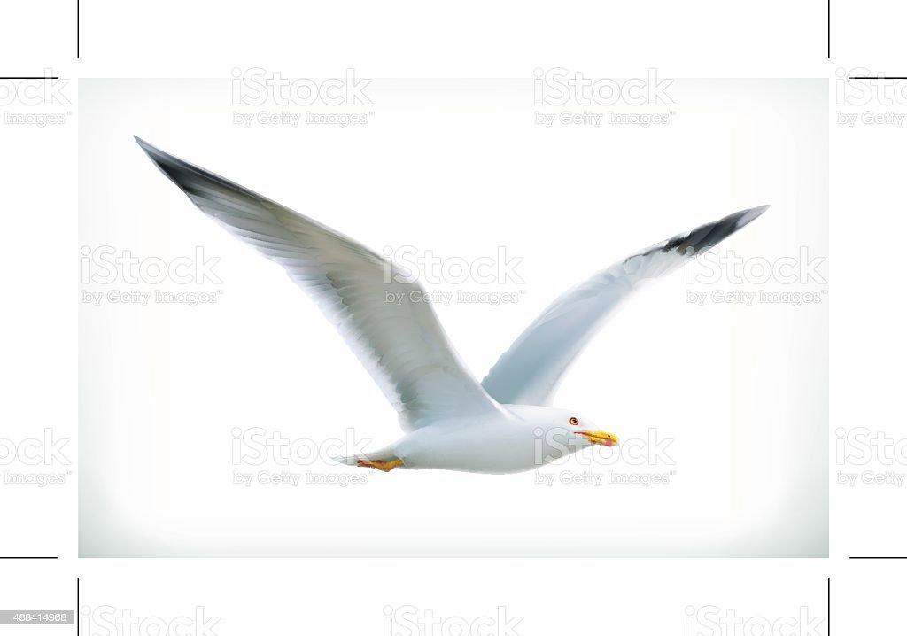 Sea gull, vector icon vector art illustration